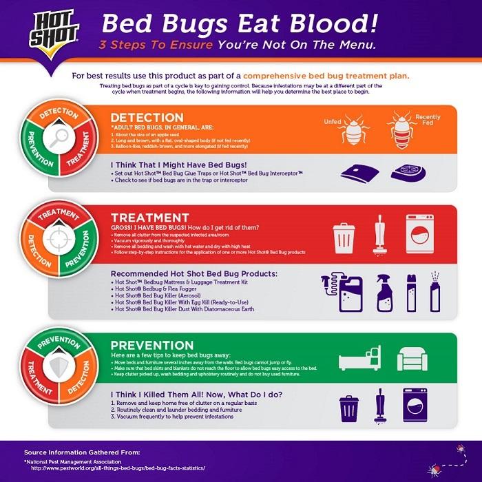 Hot Shot Bed Bug Fogger Instructions 28 Images Hot Shot 17 5 Oz Bed Bug And Flea Killer